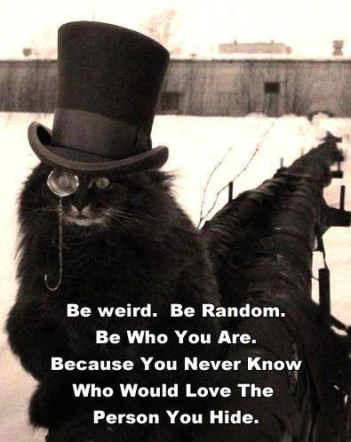 Tophat cat